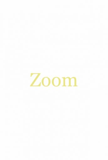 Zoom Phone 101
